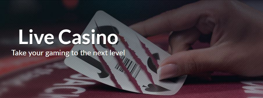 live casino Go Wild Casino
